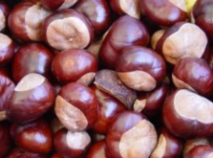 This is how to cook chestnuts