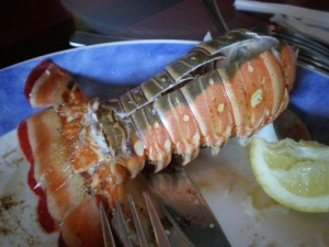 This is how to cook lobster tail