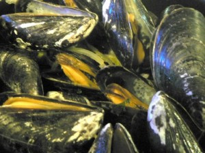 This is how to cook mussels